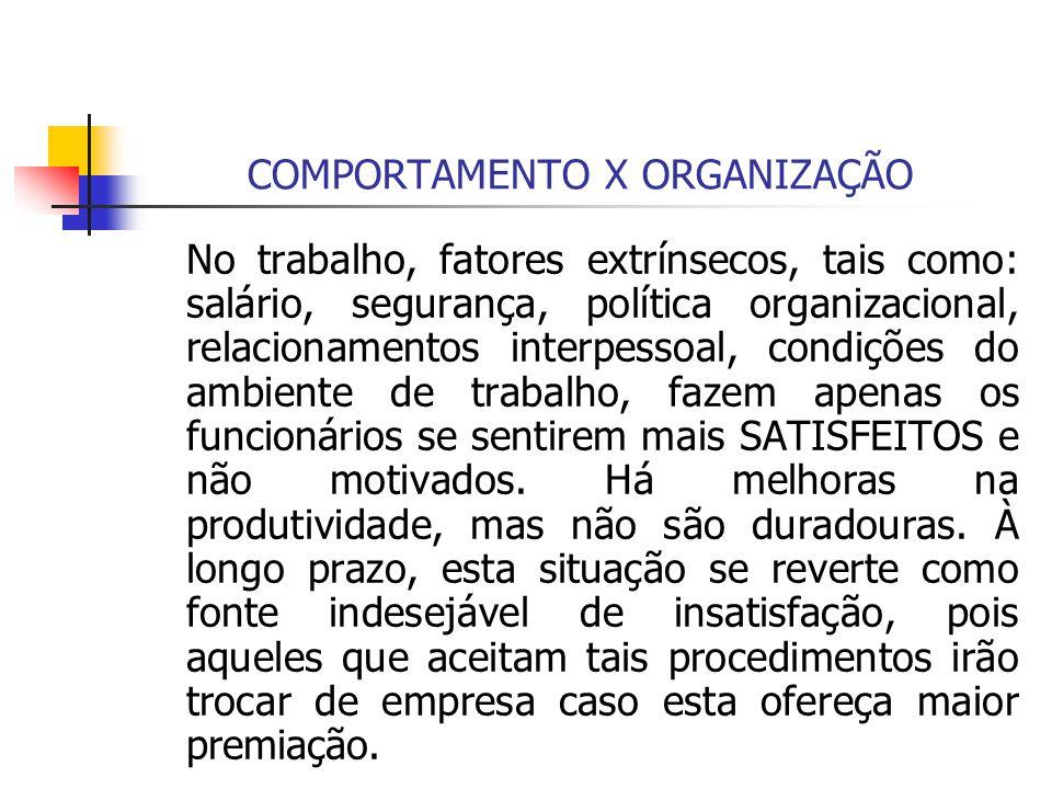 COMPORTAMENTO X ORGANIZAÇÃO