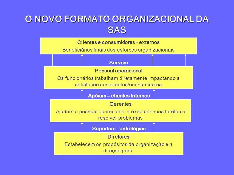 O NOVO FORMATO ORGANIZACIONAL DA SAS