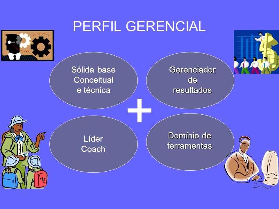 + PERFIL GERENCIAL Sólida base Conceitual e técnica