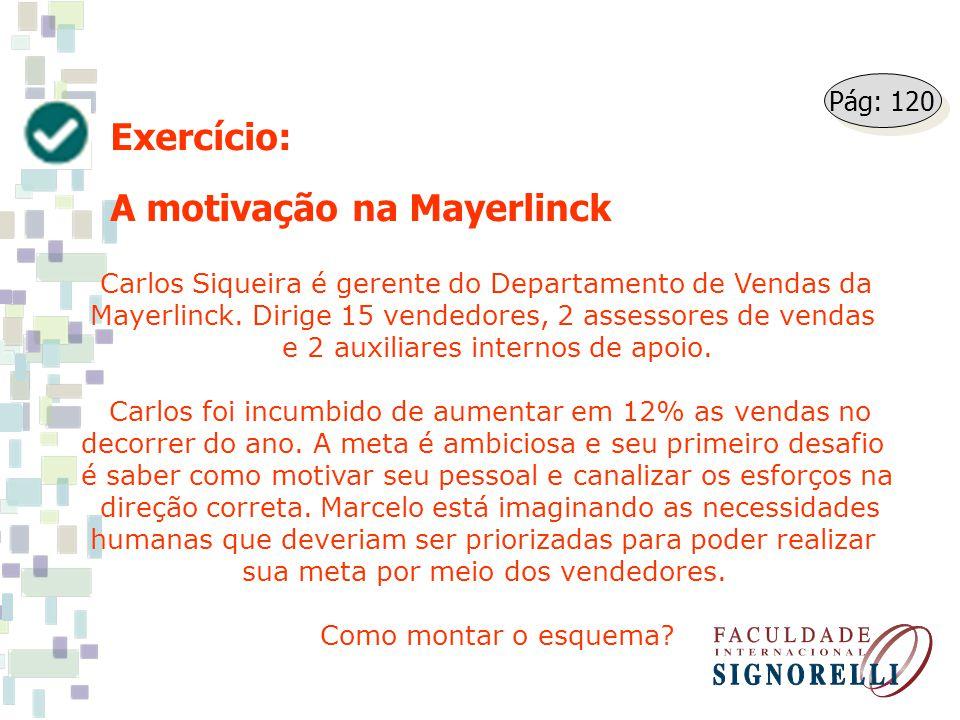 A motivação na Mayerlinck