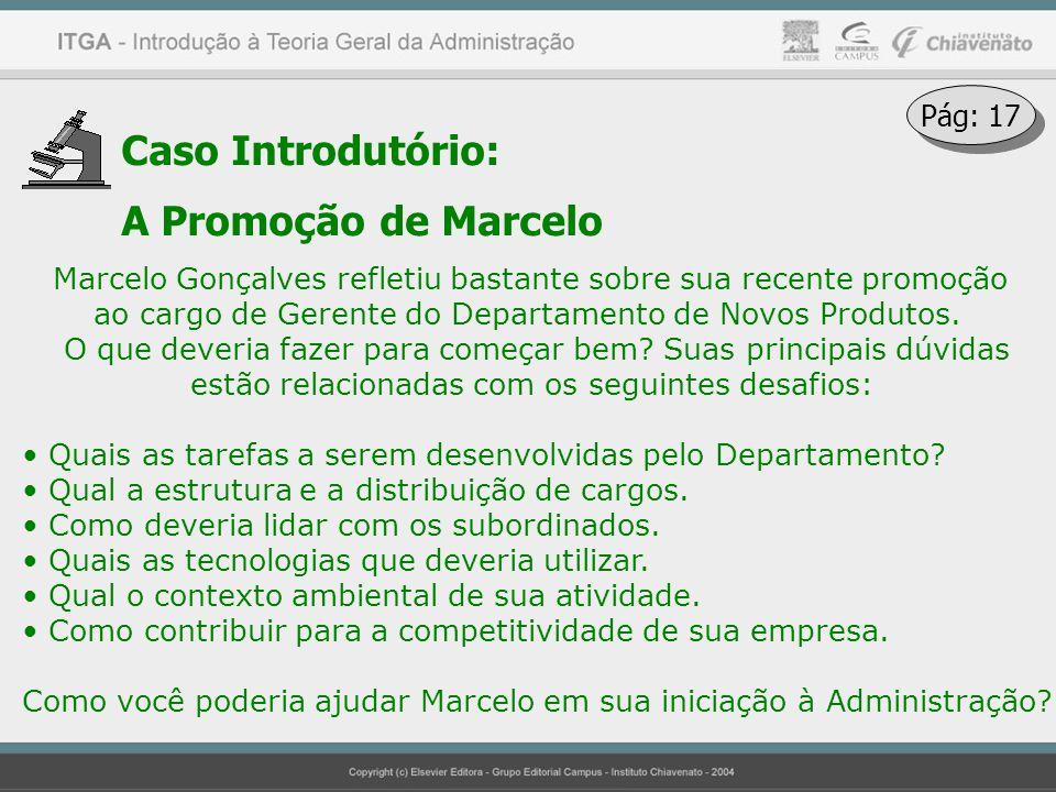Caso Introdutório: A Promoção de Marcelo Pág: 17