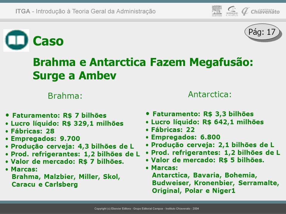 Caso Brahma e Antarctica Fazem Megafusão: Surge a Ambev Pág: 17