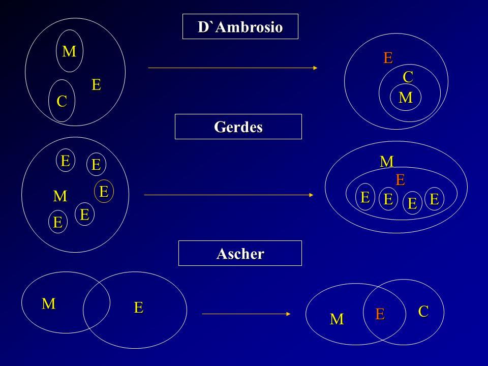 E C M D`Ambrosio Gerdes Ascher