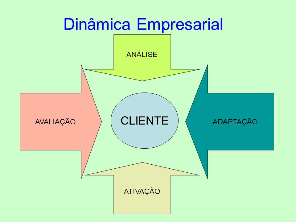 ANÁLISE Dinâmica Empresarial AVALIAÇÃO ADAPTAÇÃO CLIENTE ATIVAÇÃO