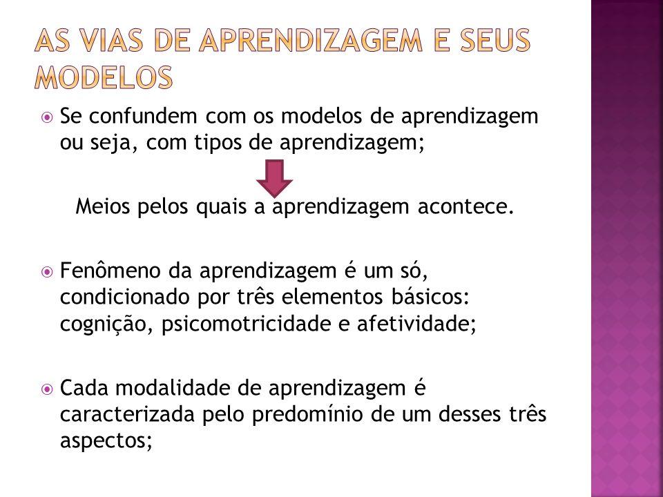 As vias de aprendizagem e seus modelos