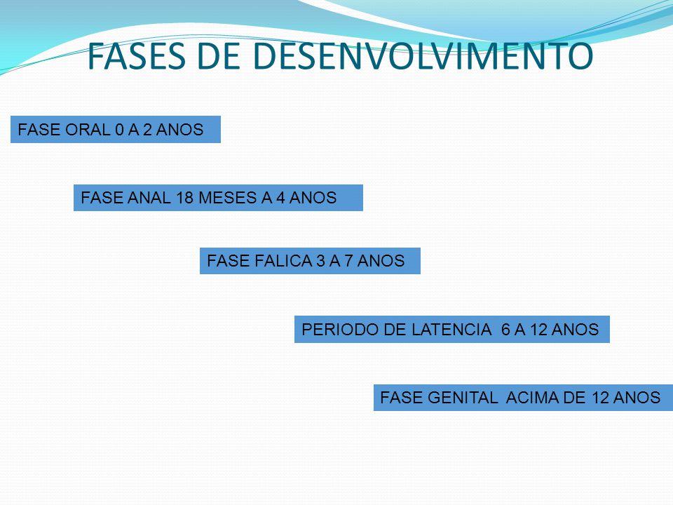 FASES DE DESENVOLVIMENTO