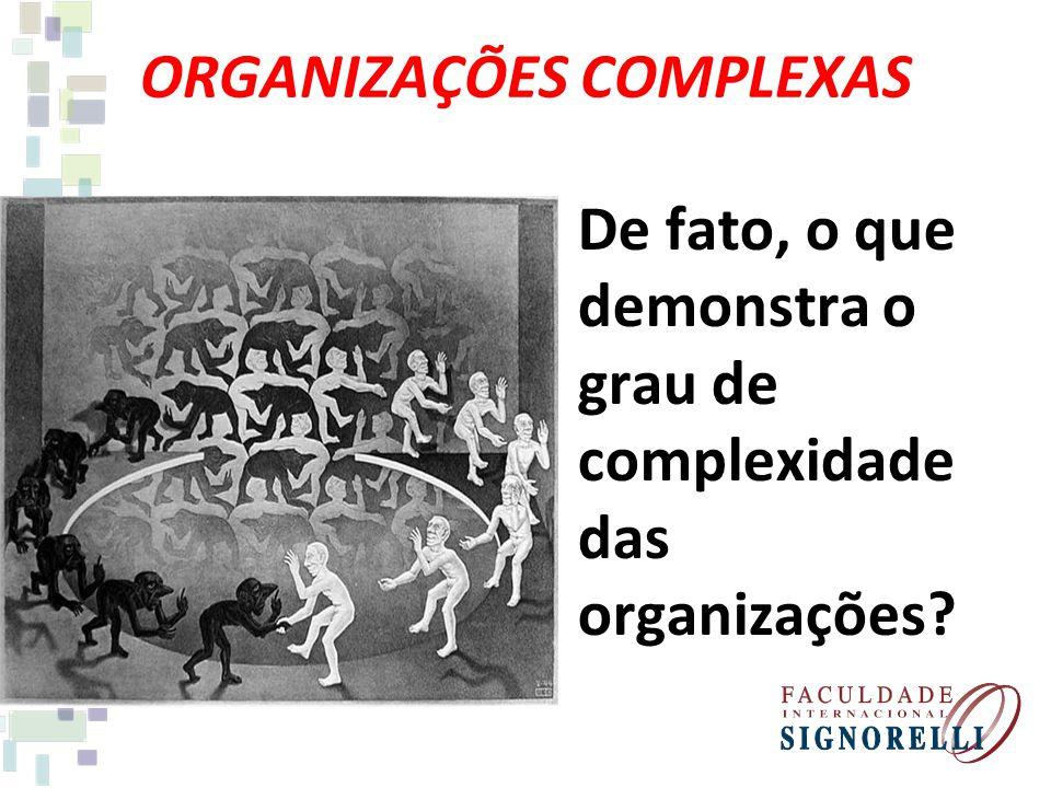 ORGANIZAÇÕES COMPLEXAS