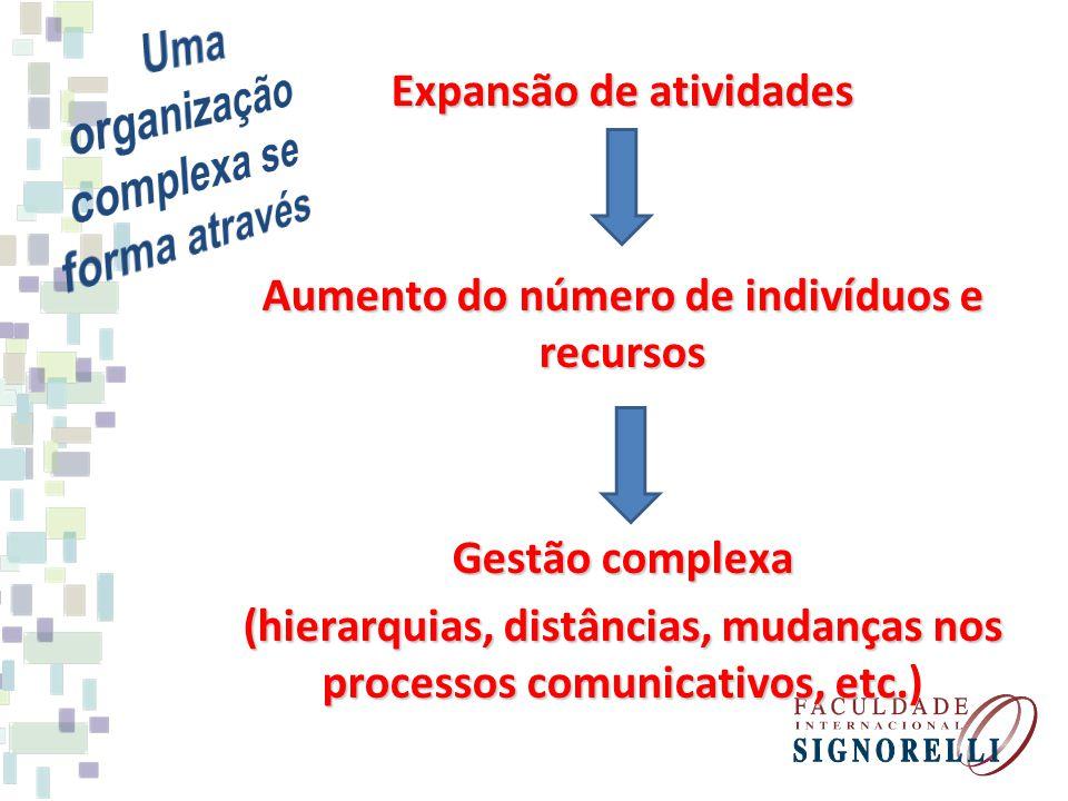Uma organização complexa se forma através