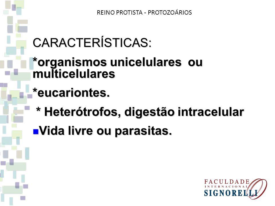 REINO PROTISTA - PROTOZOÁRIOS