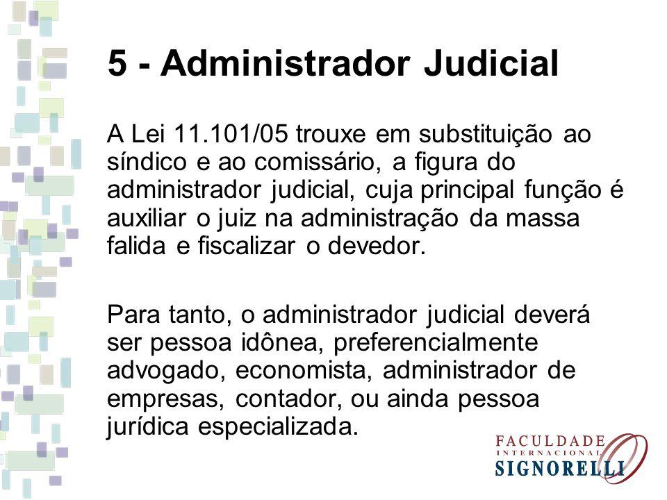 5 - Administrador Judicial