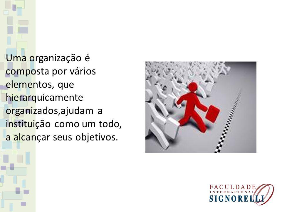 Uma organização é composta por vários elementos, que hierarquicamente organizados,ajudam a instituição como um todo, a alcançar seus objetivos.