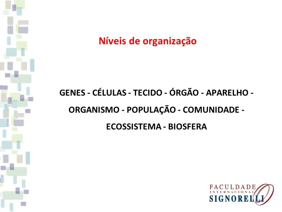 Níveis de organização GENES - CÉLULAS - TECIDO - ÓRGÃO - APARELHO - ORGANISMO - POPULAÇÃO - COMUNIDADE - ECOSSISTEMA - BIOSFERA.