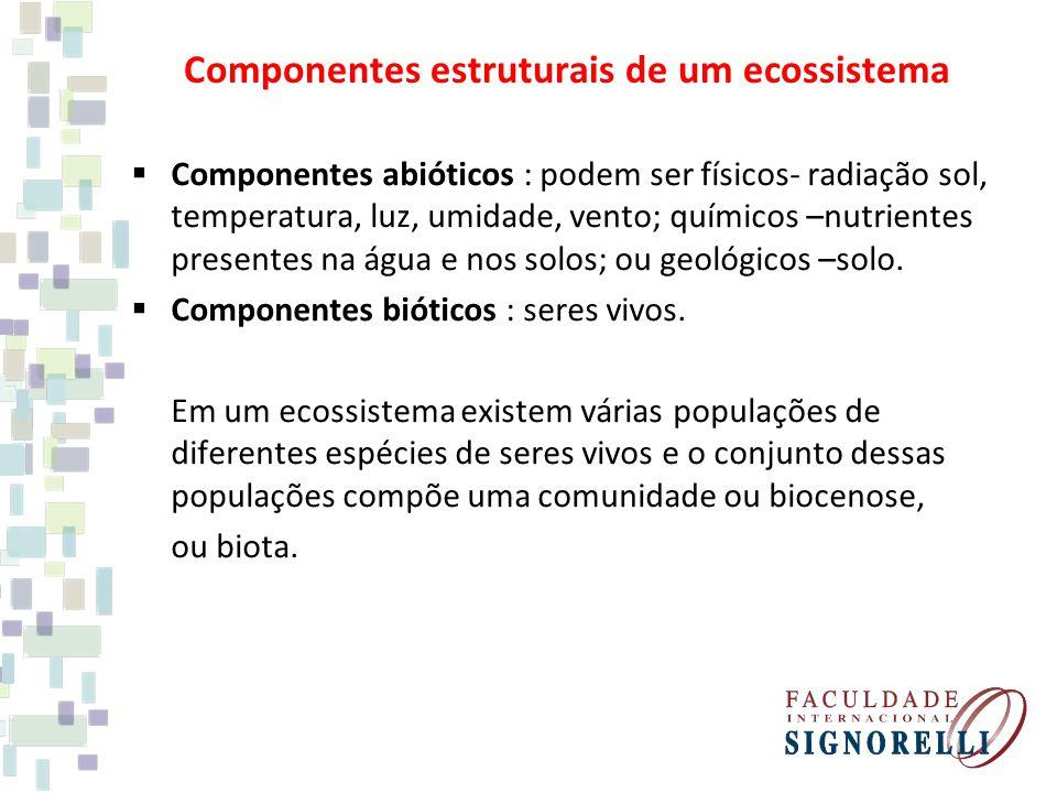 Componentes estruturais de um ecossistema