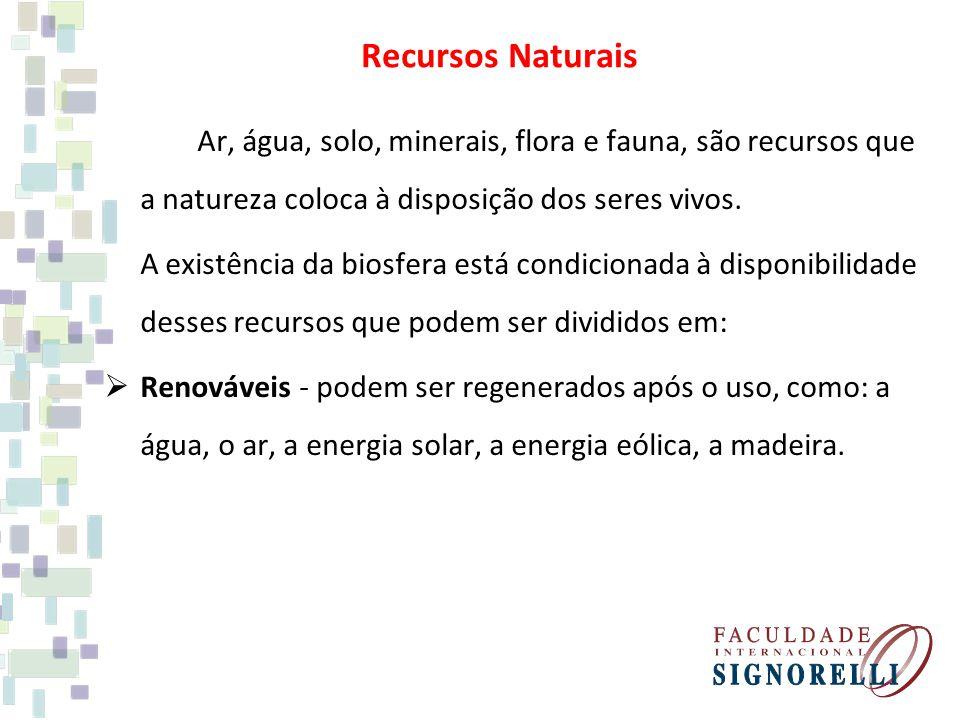 Recursos Naturais Ar, água, solo, minerais, flora e fauna, são recursos que a natureza coloca à disposição dos seres vivos.