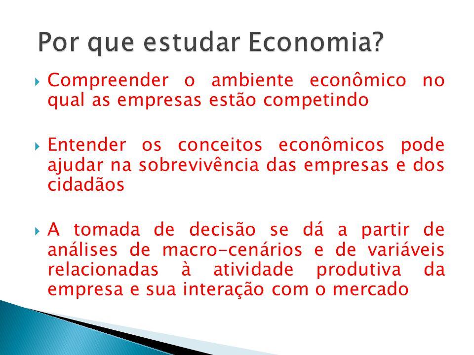 Por que estudar Economia