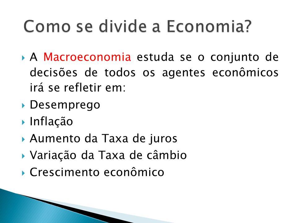 Como se divide a Economia