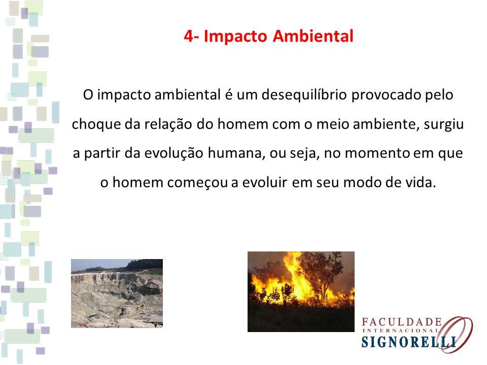 4- Impacto Ambiental