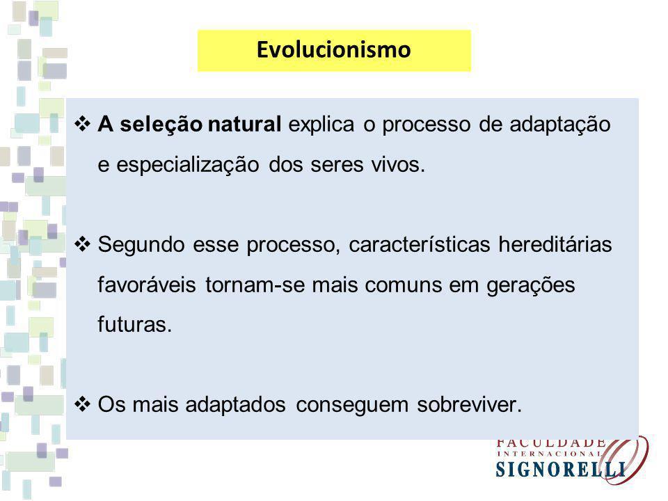 Evolucionismo A seleção natural explica o processo de adaptação e especialização dos seres vivos.