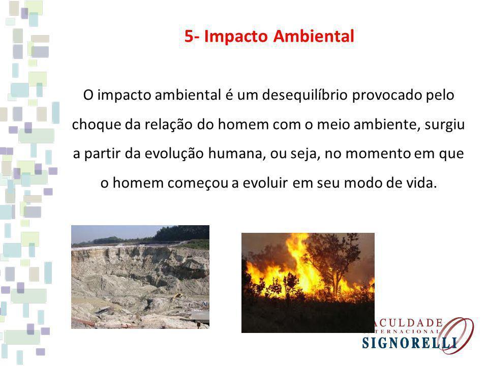 5- Impacto Ambiental