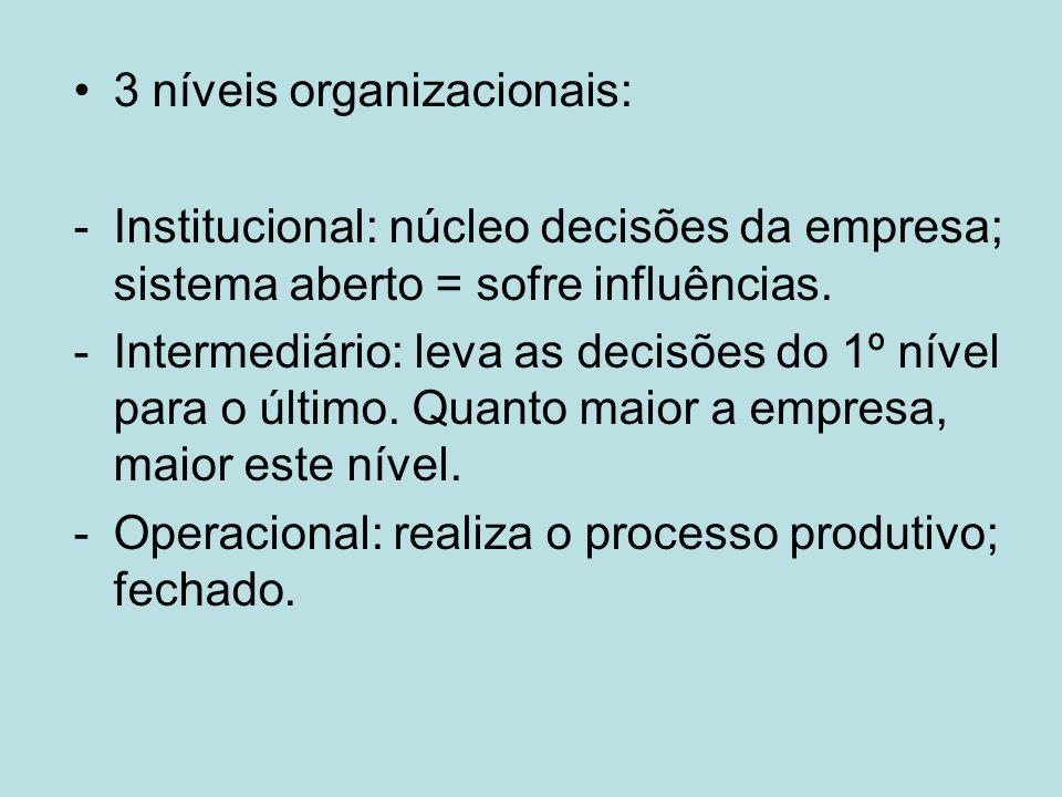 3 níveis organizacionais: