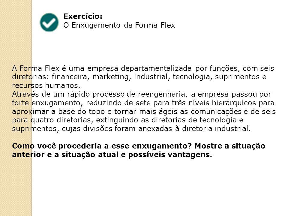 Exercício: O Enxugamento da Forma Flex.