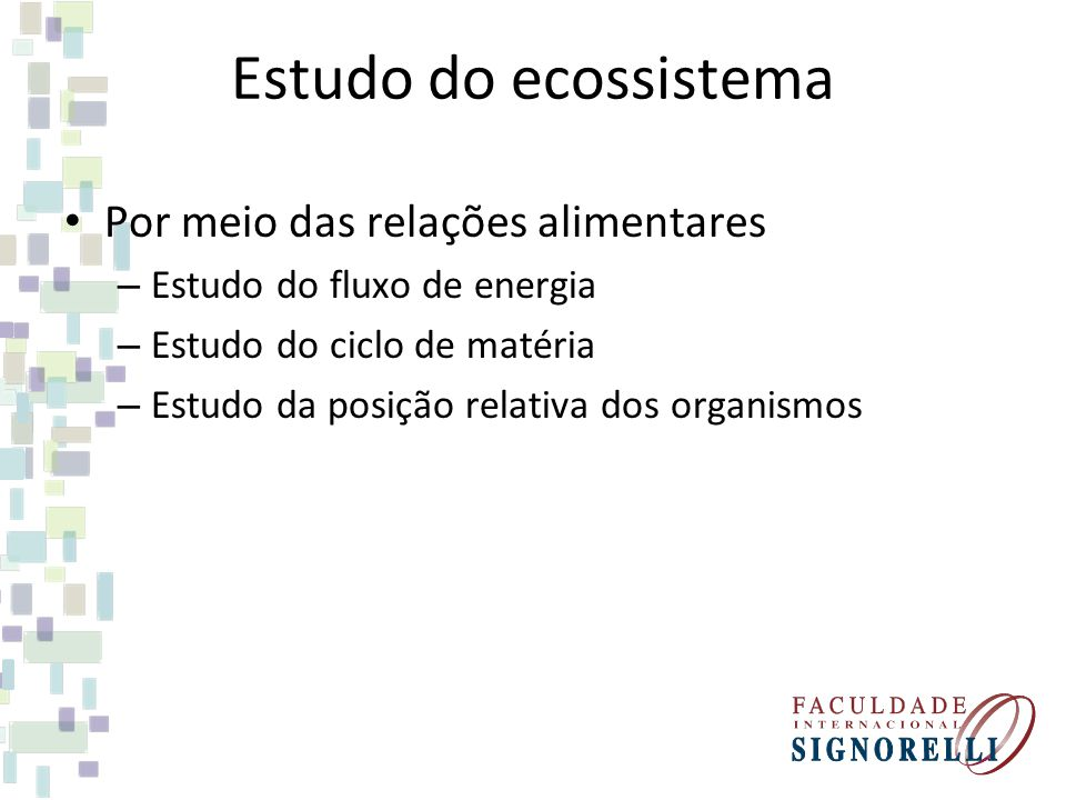 Estudo do ecossistema Por meio das relações alimentares