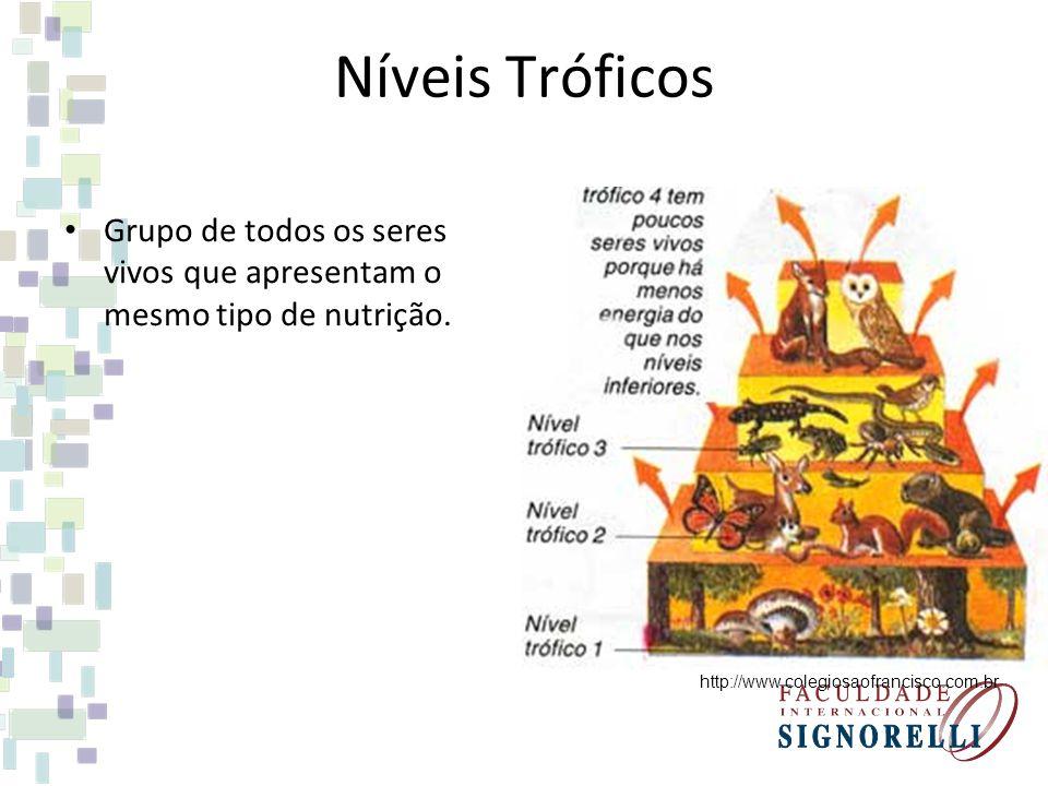 Níveis Tróficos Grupo de todos os seres vivos que apresentam o mesmo tipo de nutrição.
