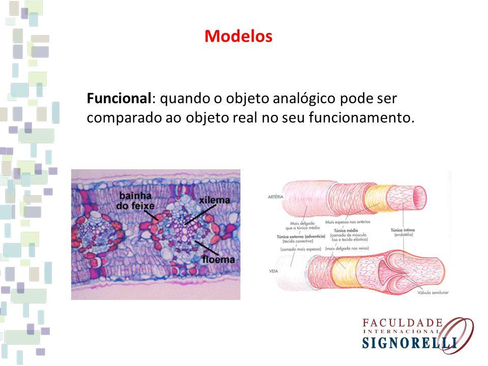 Modelos Funcional: quando o objeto analógico pode ser comparado ao objeto real no seu funcionamento.
