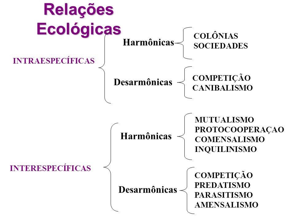 Relações Ecológicas Harmônicas Desarmônicas Harmônicas Desarmônicas
