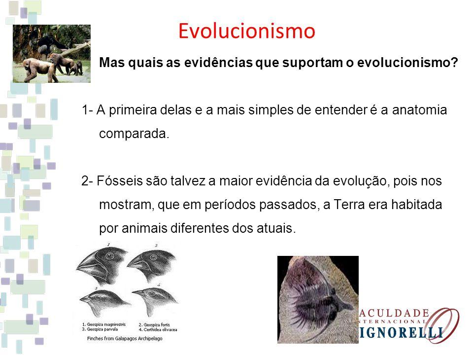 Evolucionismo Mas quais as evidências que suportam o evolucionismo