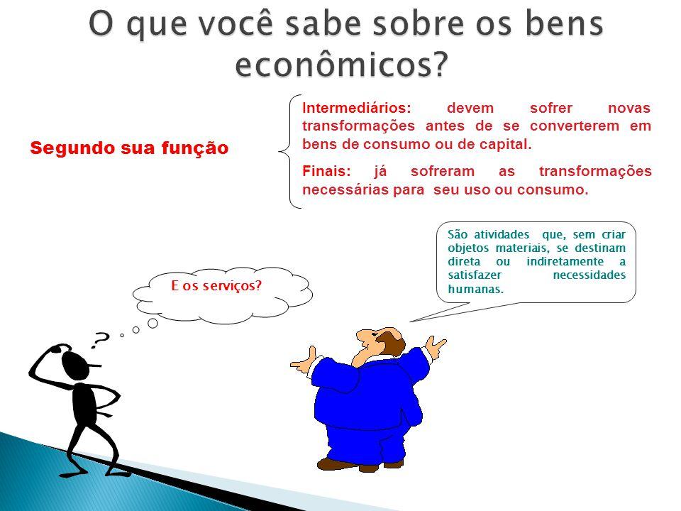 O que você sabe sobre os bens econômicos