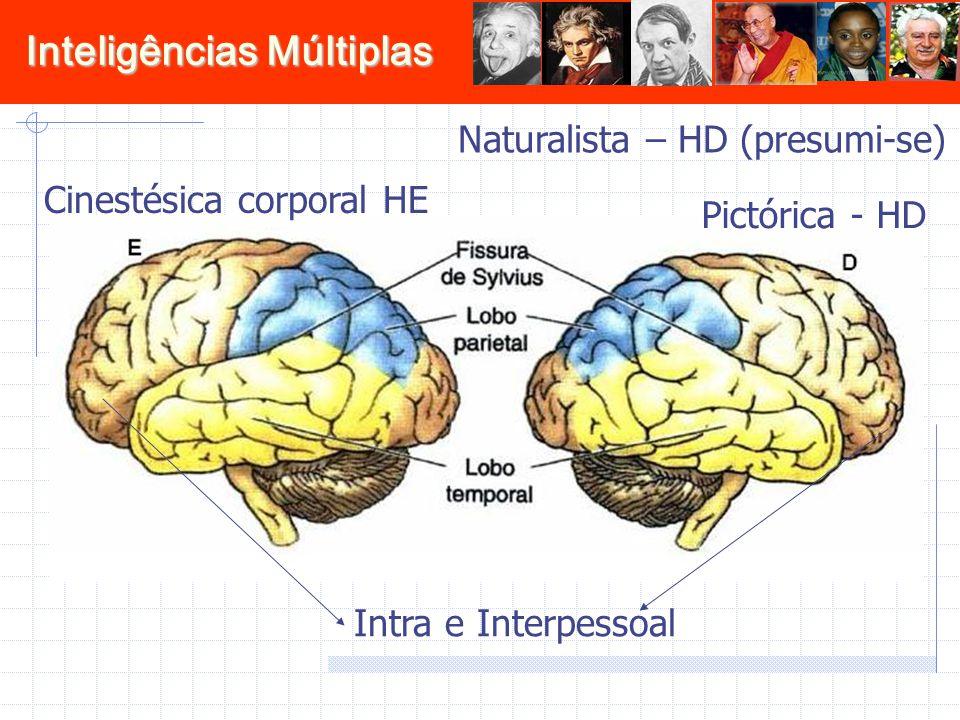 Naturalista – HD (presumi-se)