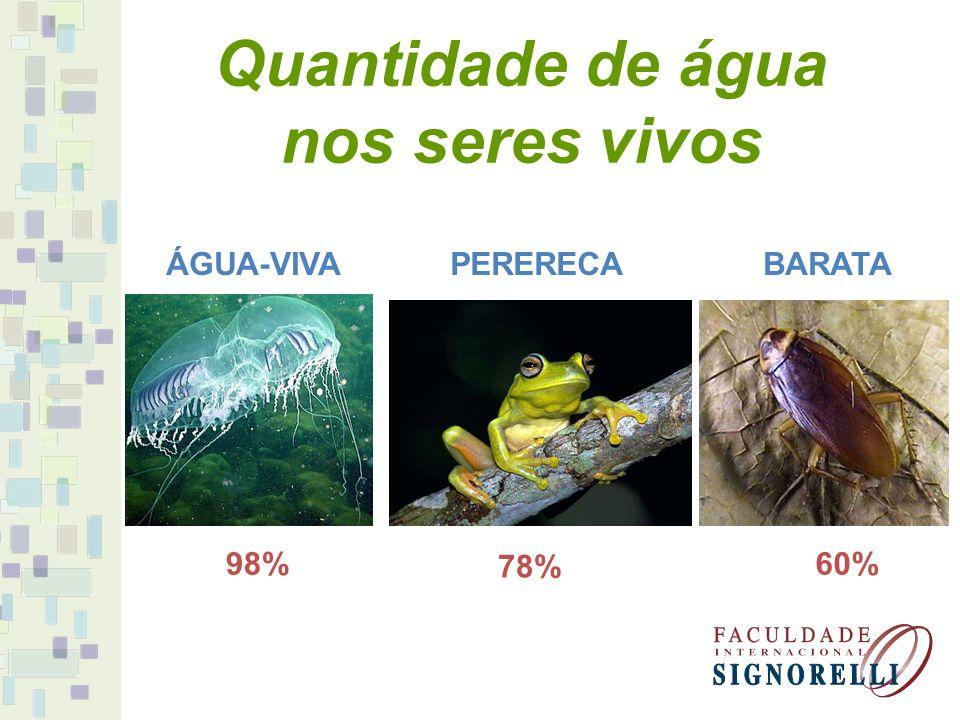 Quantidade de água nos seres vivos