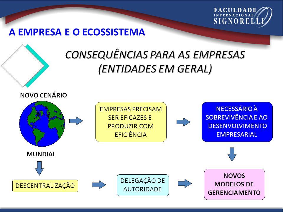 CONSEQUÊNCIAS PARA AS EMPRESAS (ENTIDADES EM GERAL)
