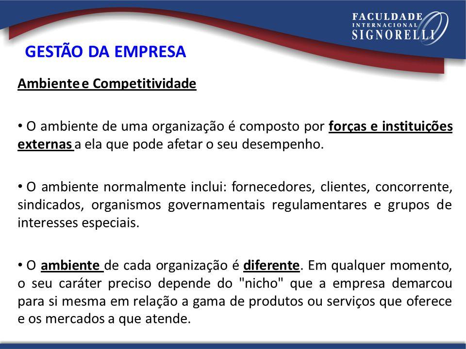 GESTÃO DA EMPRESA Ambiente e Competitividade