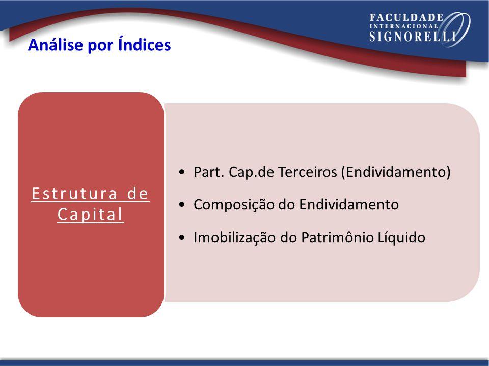 Estrutura de Capital Análise por Índices