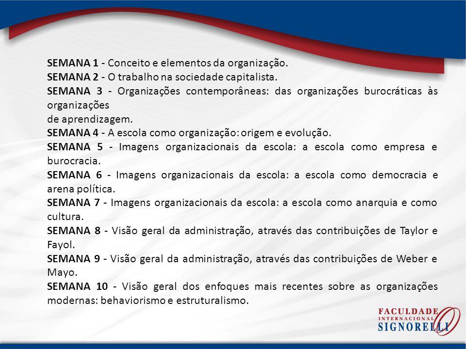 SEMANA 1 - Conceito e elementos da organização.
