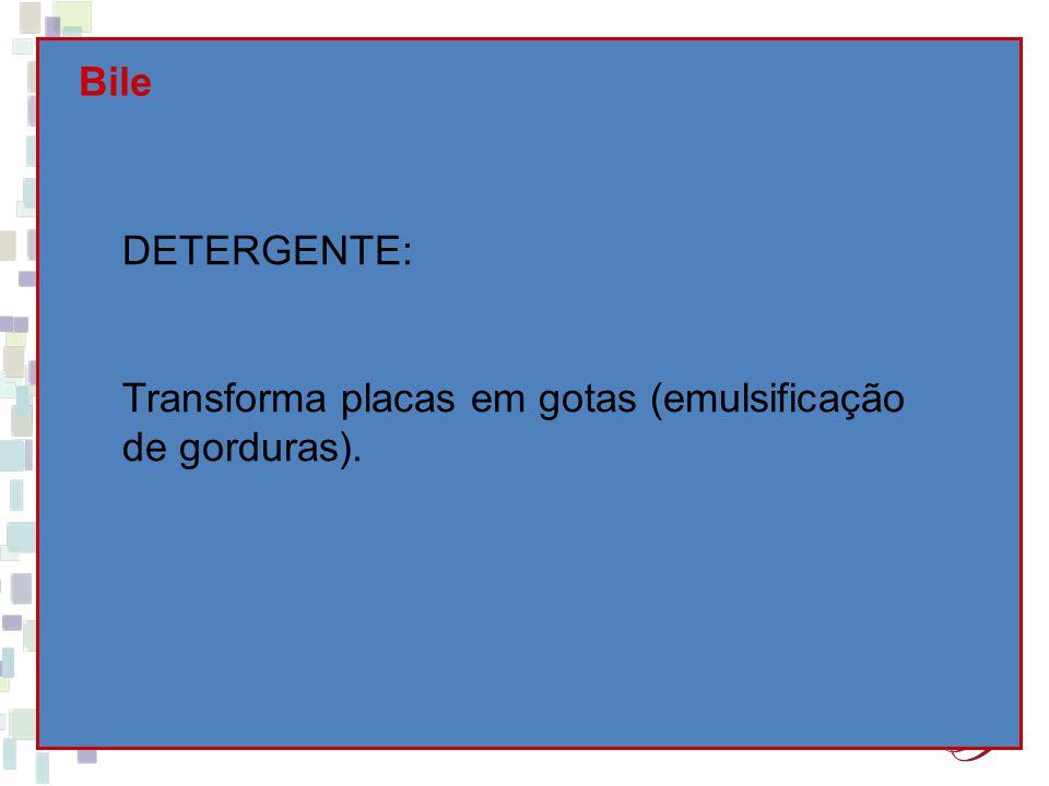 Bile DETERGENTE: Transforma placas em gotas (emulsificação de gorduras).