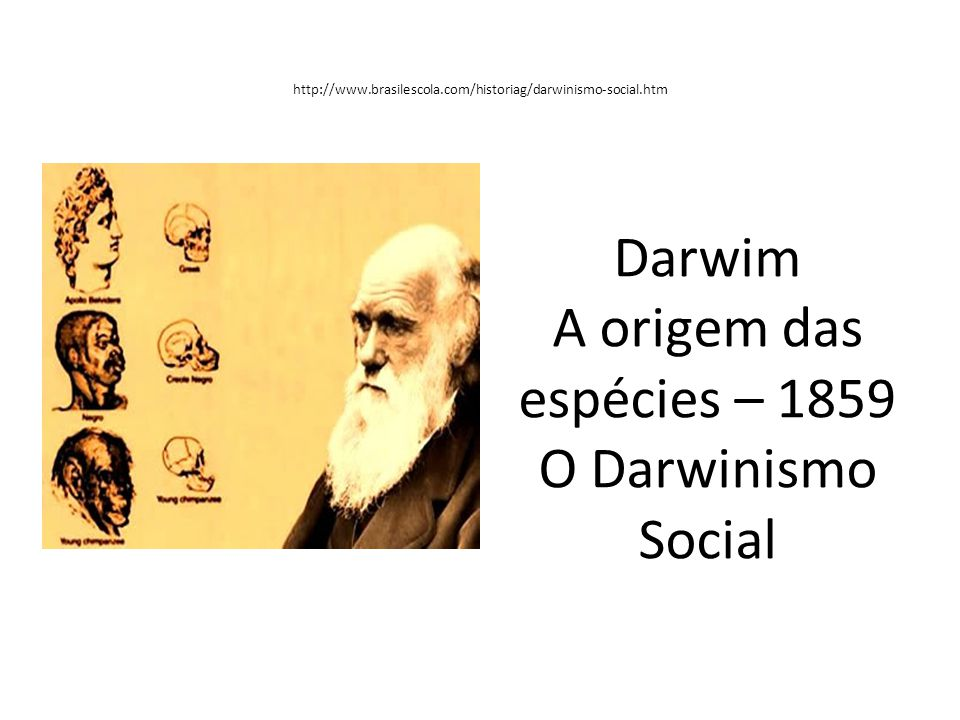 Darwim A origem das espécies – 1859 O Darwinismo Social