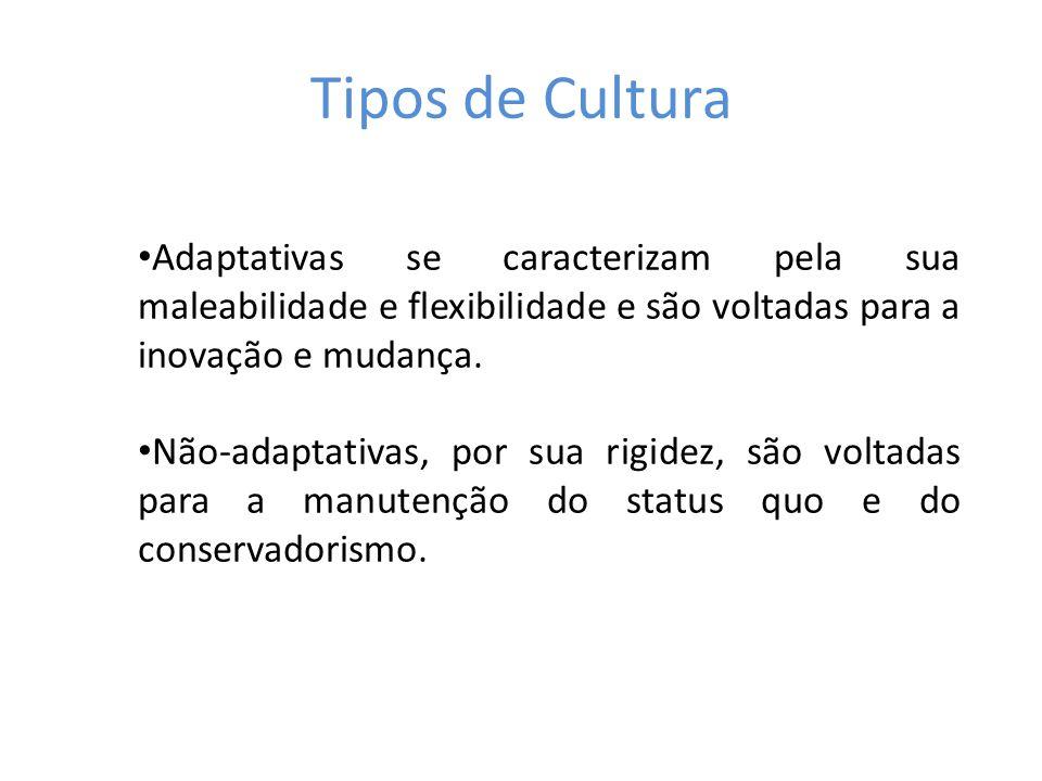 Tipos de Cultura Adaptativas se caracterizam pela sua maleabilidade e flexibilidade e são voltadas para a inovação e mudança.