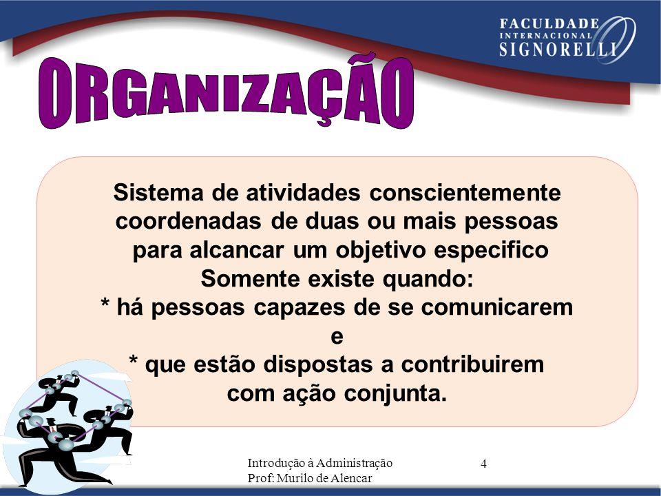 ORGANIZAÇÃO Sistema de atividades conscientemente