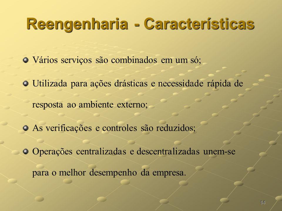 Reengenharia - Características