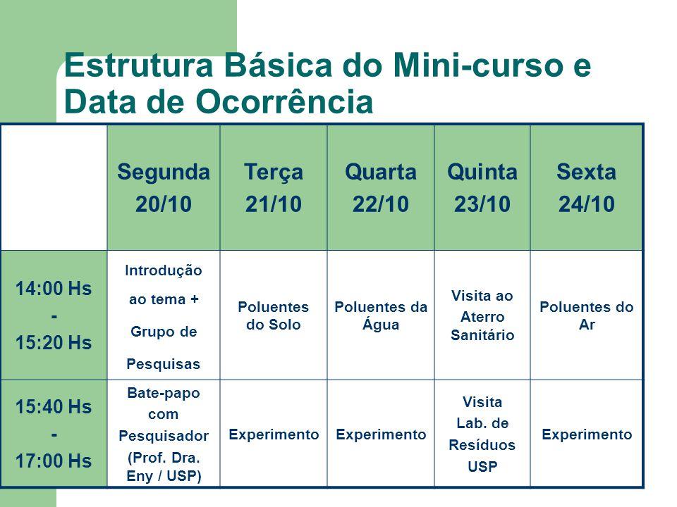Estrutura Básica do Mini-curso e Data de Ocorrência