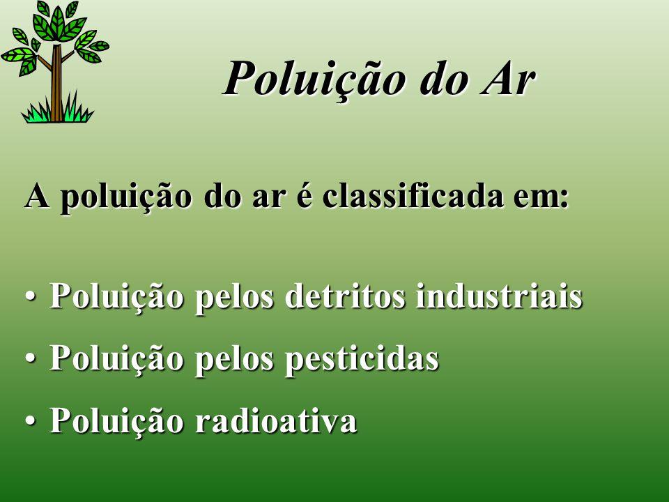 Poluição do Ar A poluição do ar é classificada em: