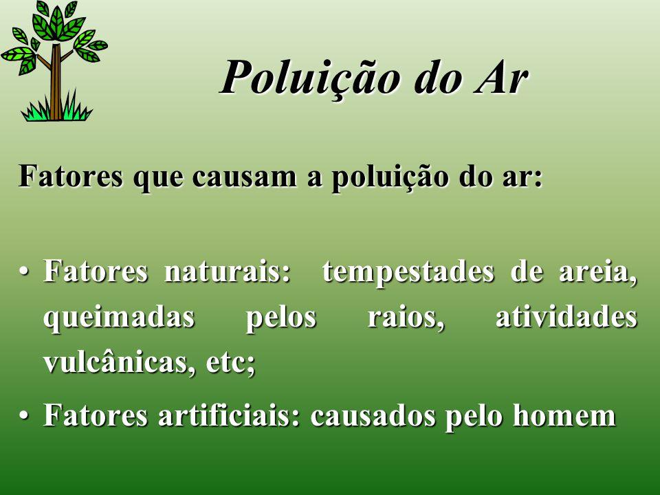Poluição do Ar Fatores que causam a poluição do ar: