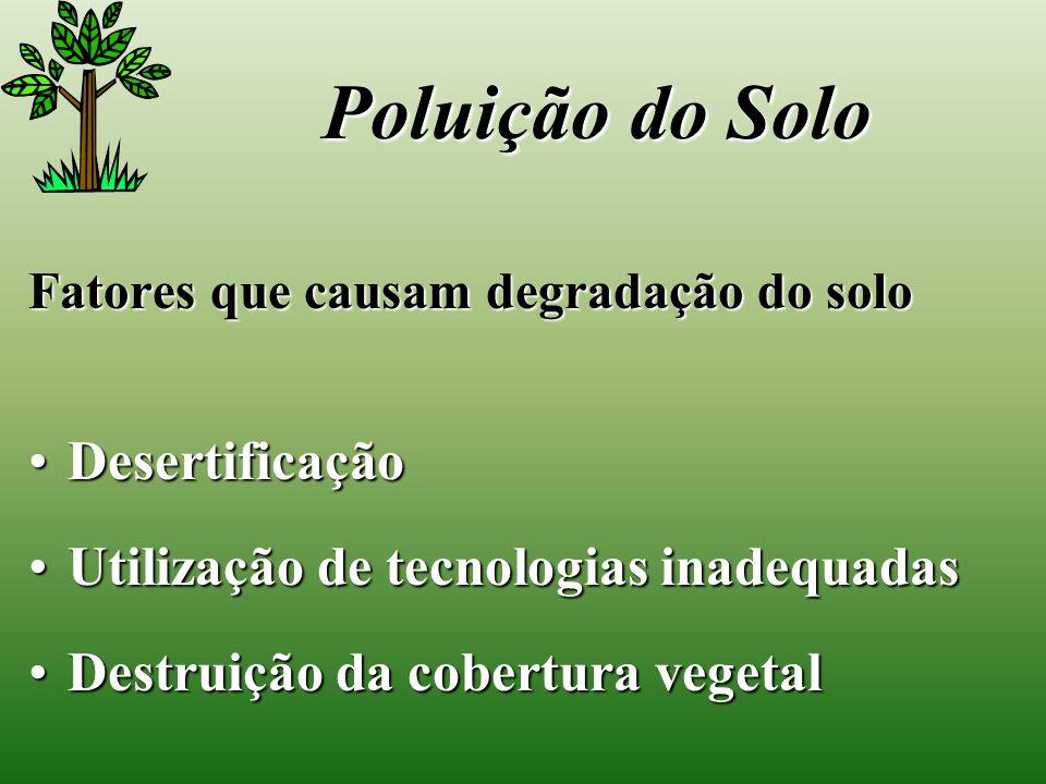 Poluição do Solo Desertificação Utilização de tecnologias inadequadas