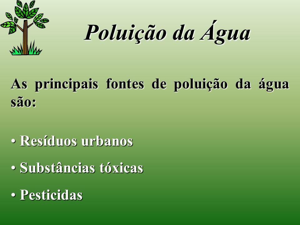 Poluição da Água As principais fontes de poluição da água são: