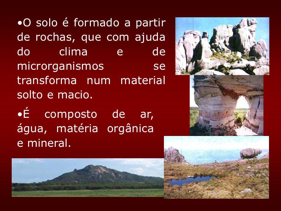 É composto de ar, água, matéria orgânica e mineral.