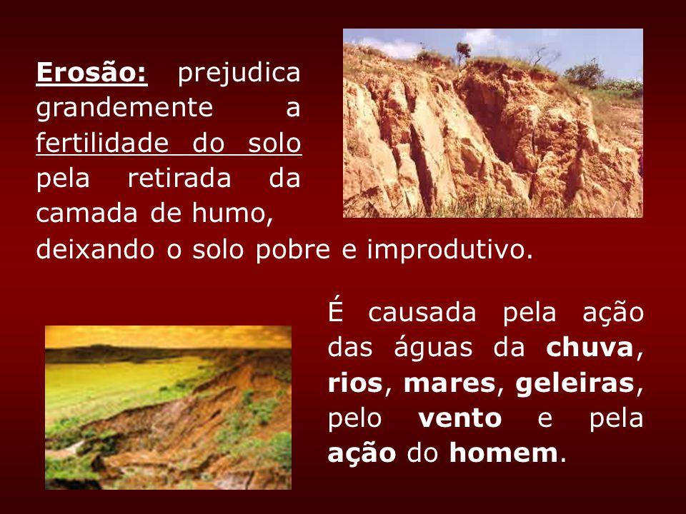 Erosão: prejudica grandemente a fertilidade do solo pela retirada da camada de humo,