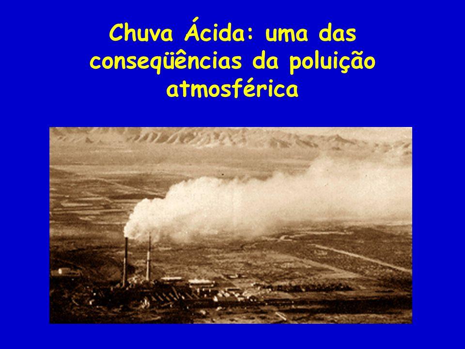 Chuva Ácida: uma das conseqüências da poluição atmosférica